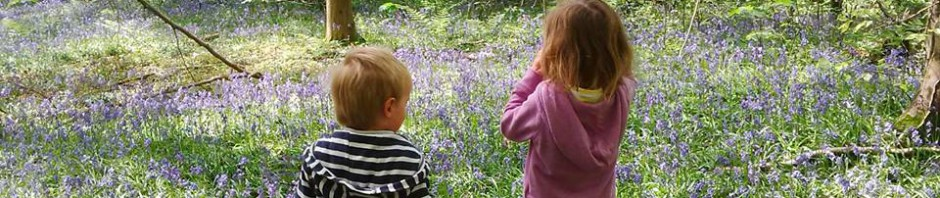 cropped-kids-in-bluebell-woods.jpg