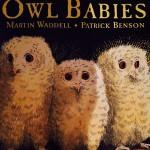Book Owl Babies
