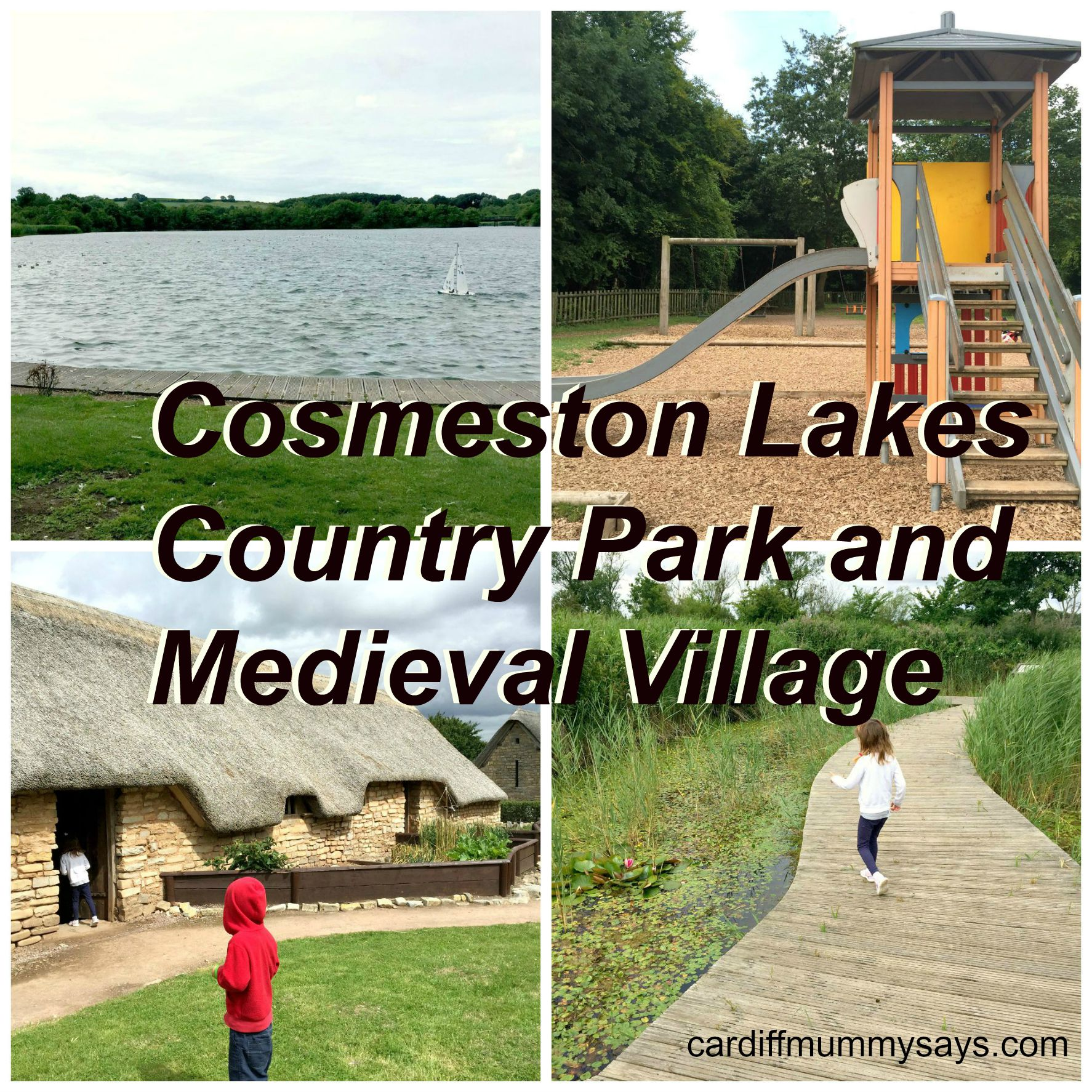 Cosmeston Collage