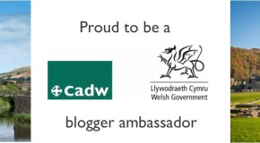 CadwBloggerBannerNEW APPROVED