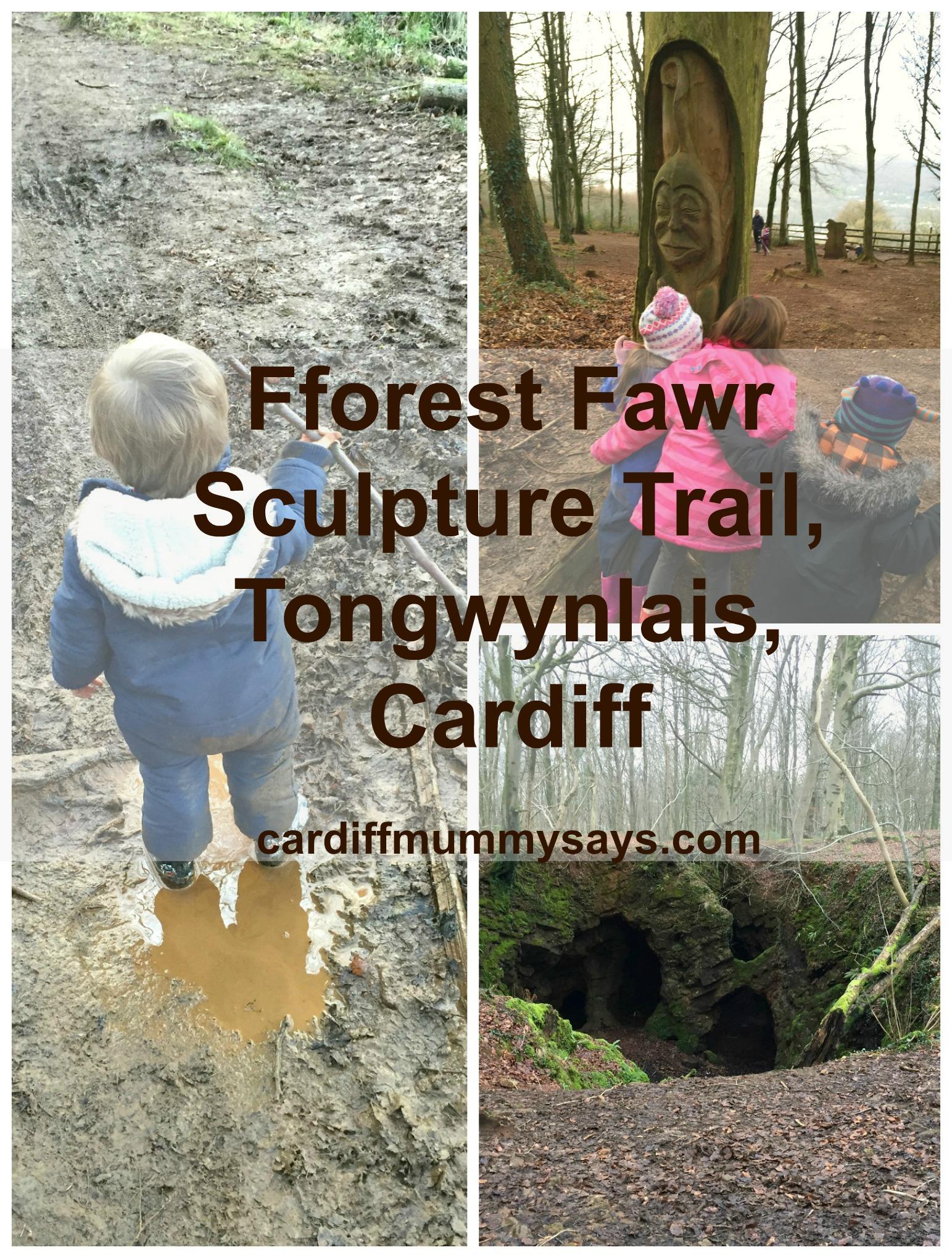 Fforest Fawr Pinterest image