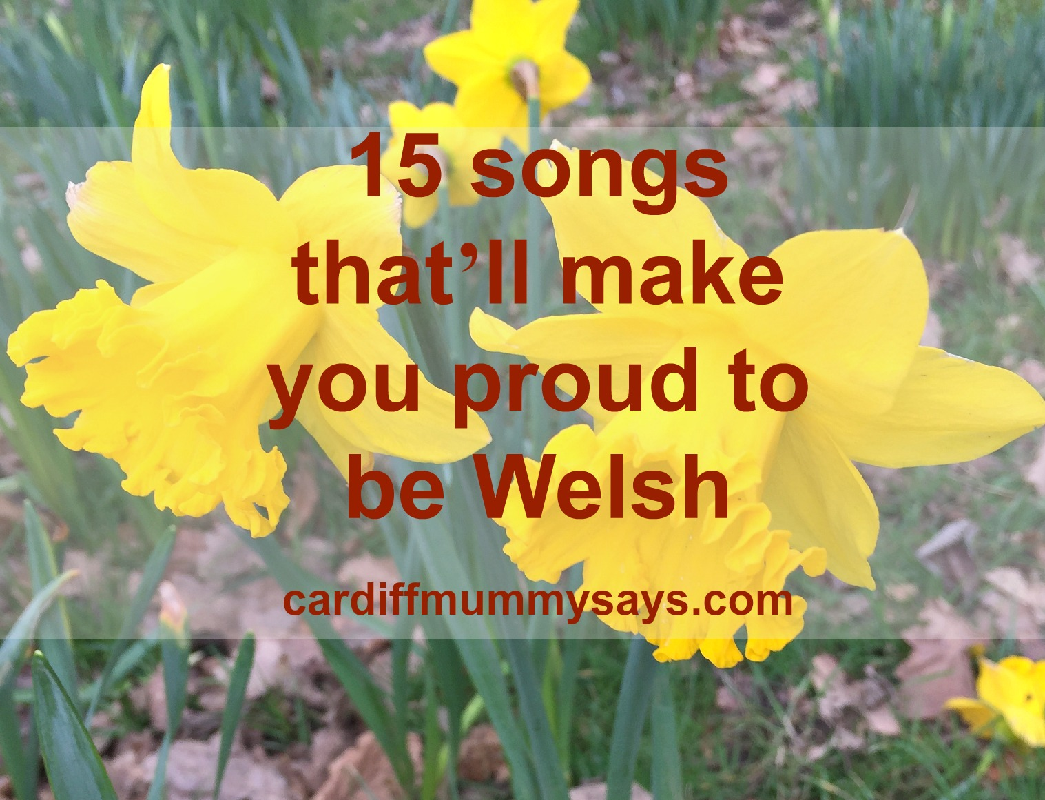 15 songs that'll make you proud to be Welsh image plus text