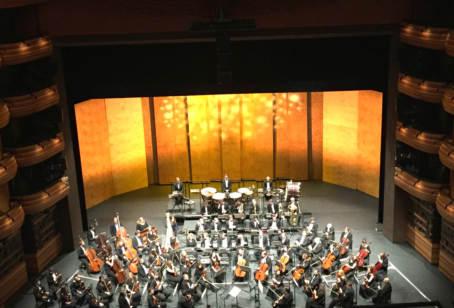 Mariinsky Orchestra Peter and the Wolf