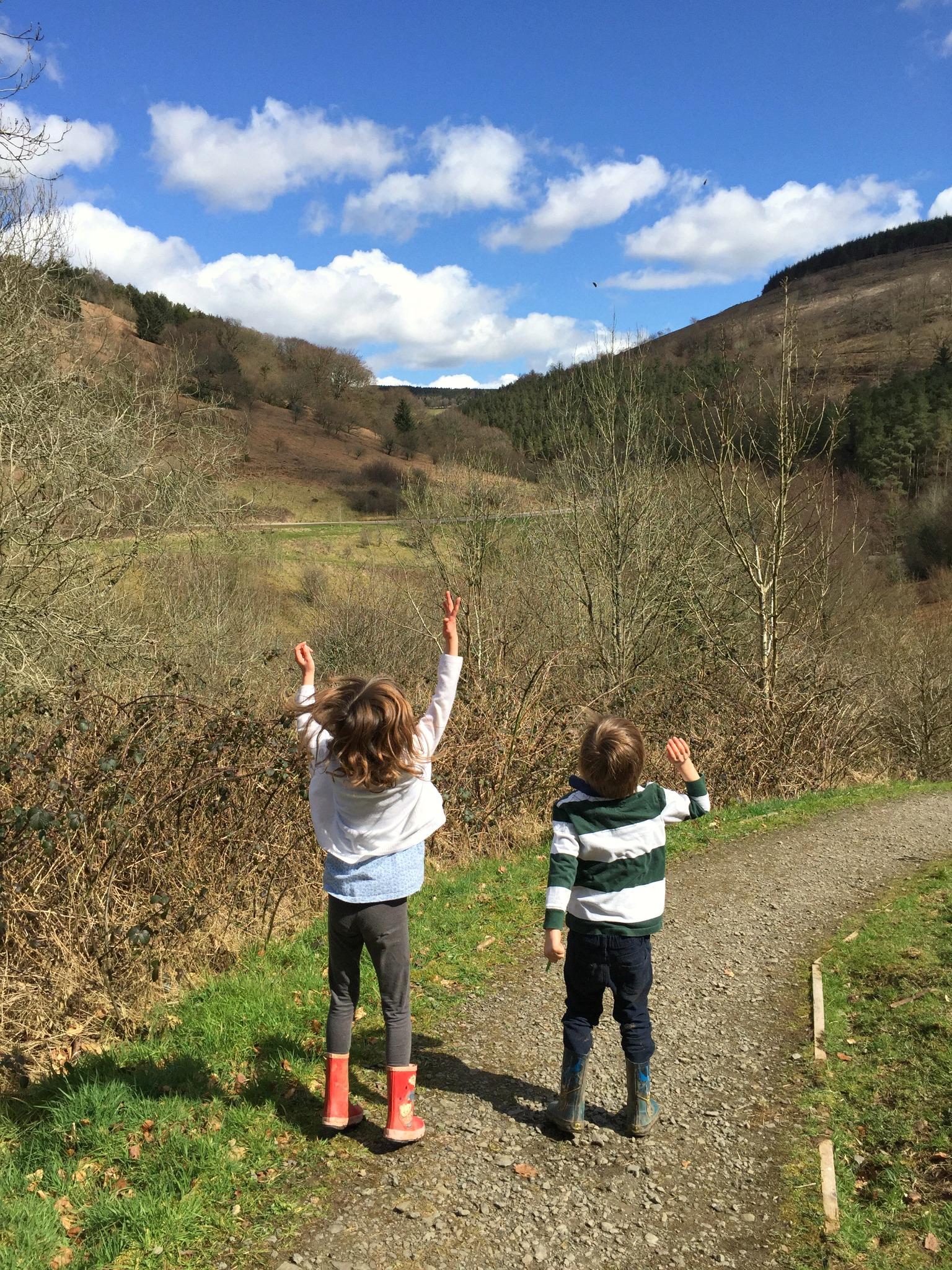 Cwmcarn Forest