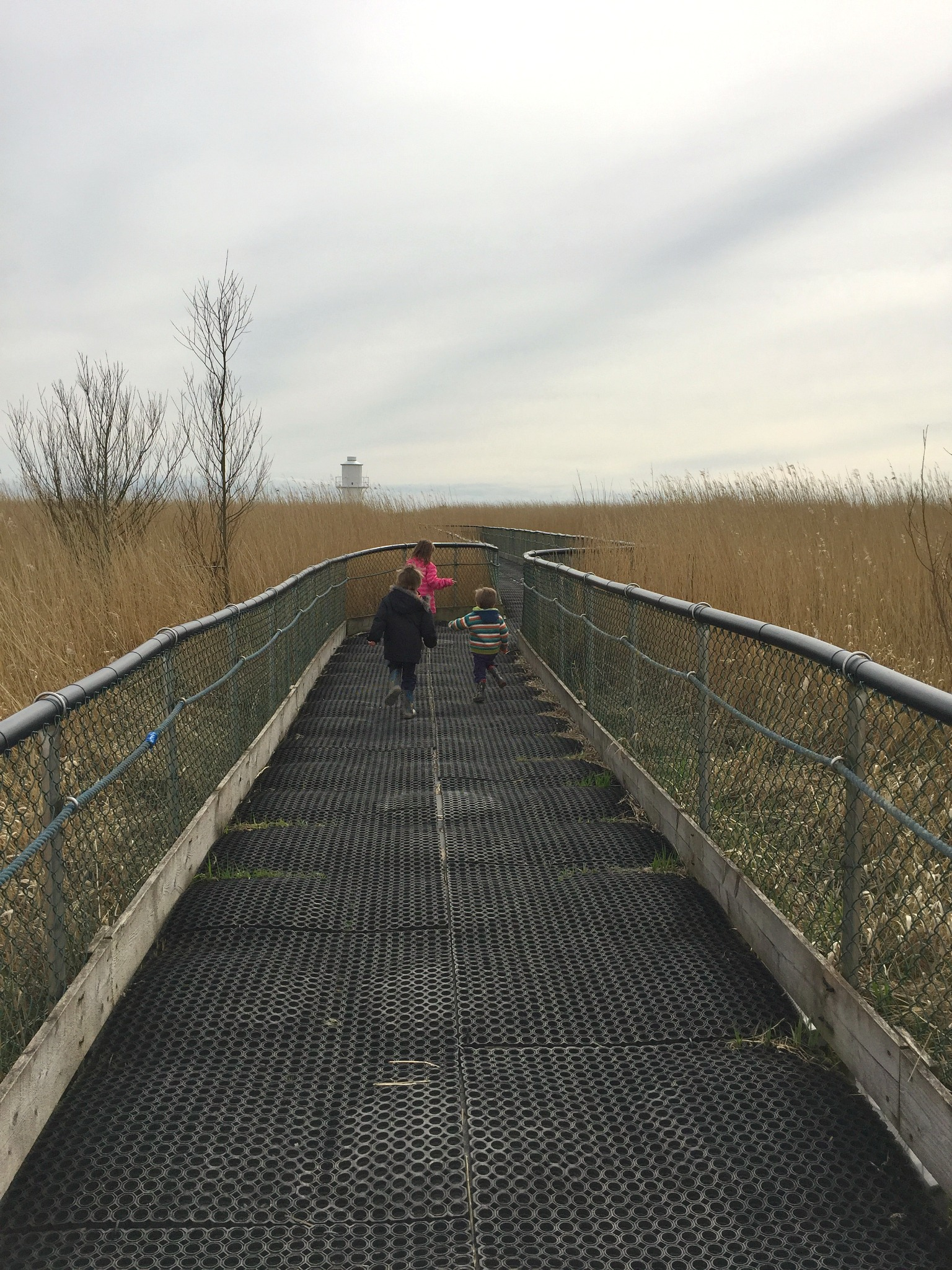 Newport Wetlands