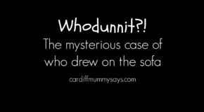 03 05 2016 Whodunnit the mysterious case of who drew on the sofa