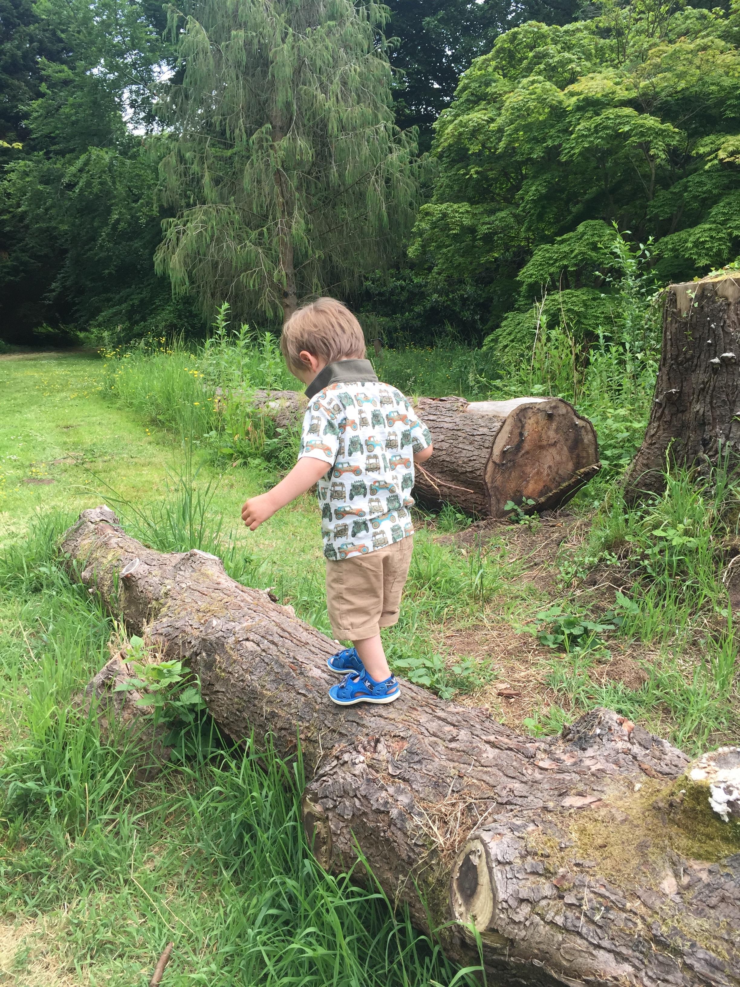 Dyffryn Gardens 17