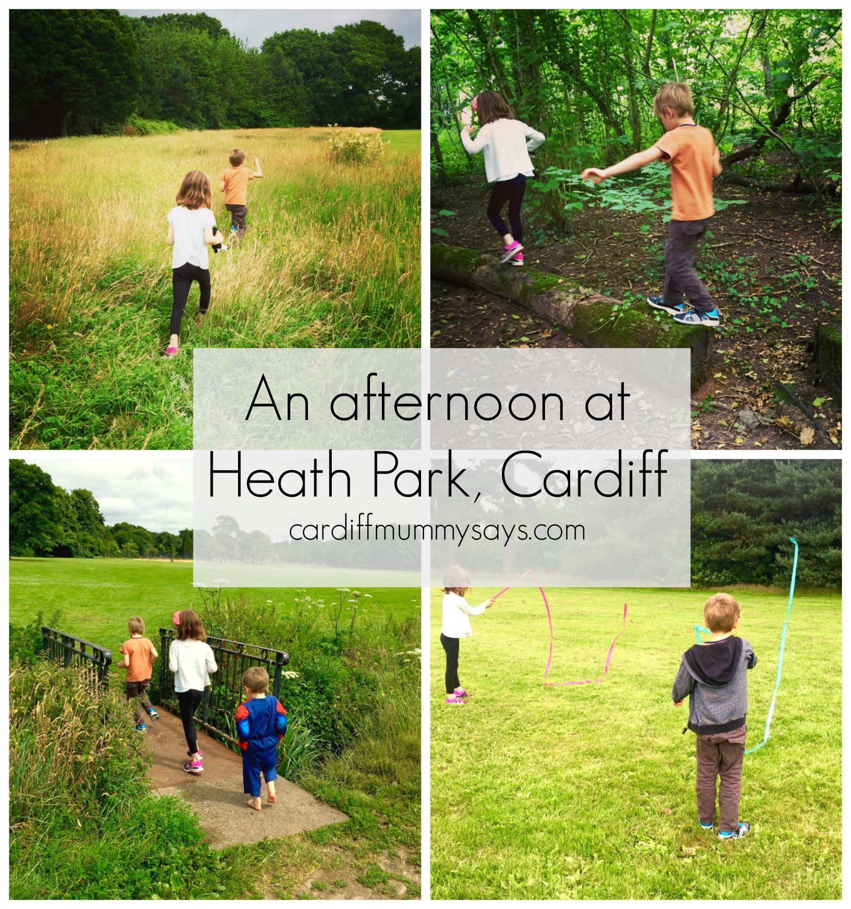 Heath Park collage 2
