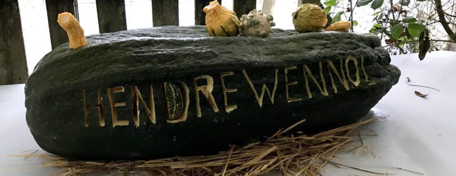 Halloween at Hendrewennol