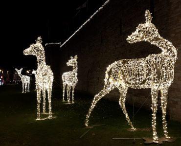 Cardiff Castle light up reindeer