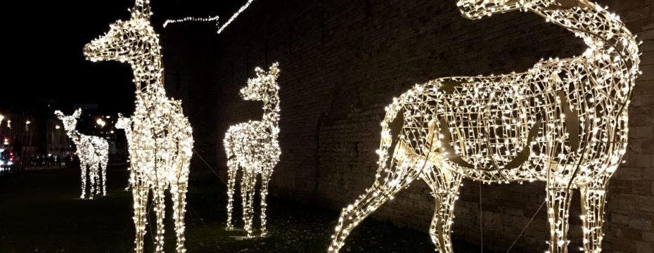 10 free or inexpensive family friendly christmas activities in and around cardiff