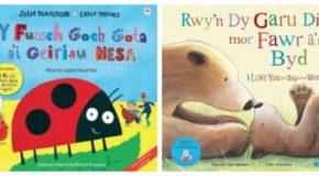 Bilingual books collage 1