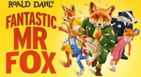 Fantastic Mr Fox New Theatre Cardiff