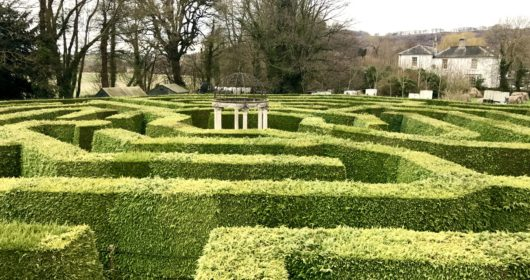 butterfly zoo and aMazing hedge puzzle