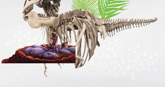 Dinosaur Babies National Museum Cardiff