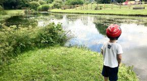 Barry Sidings Park