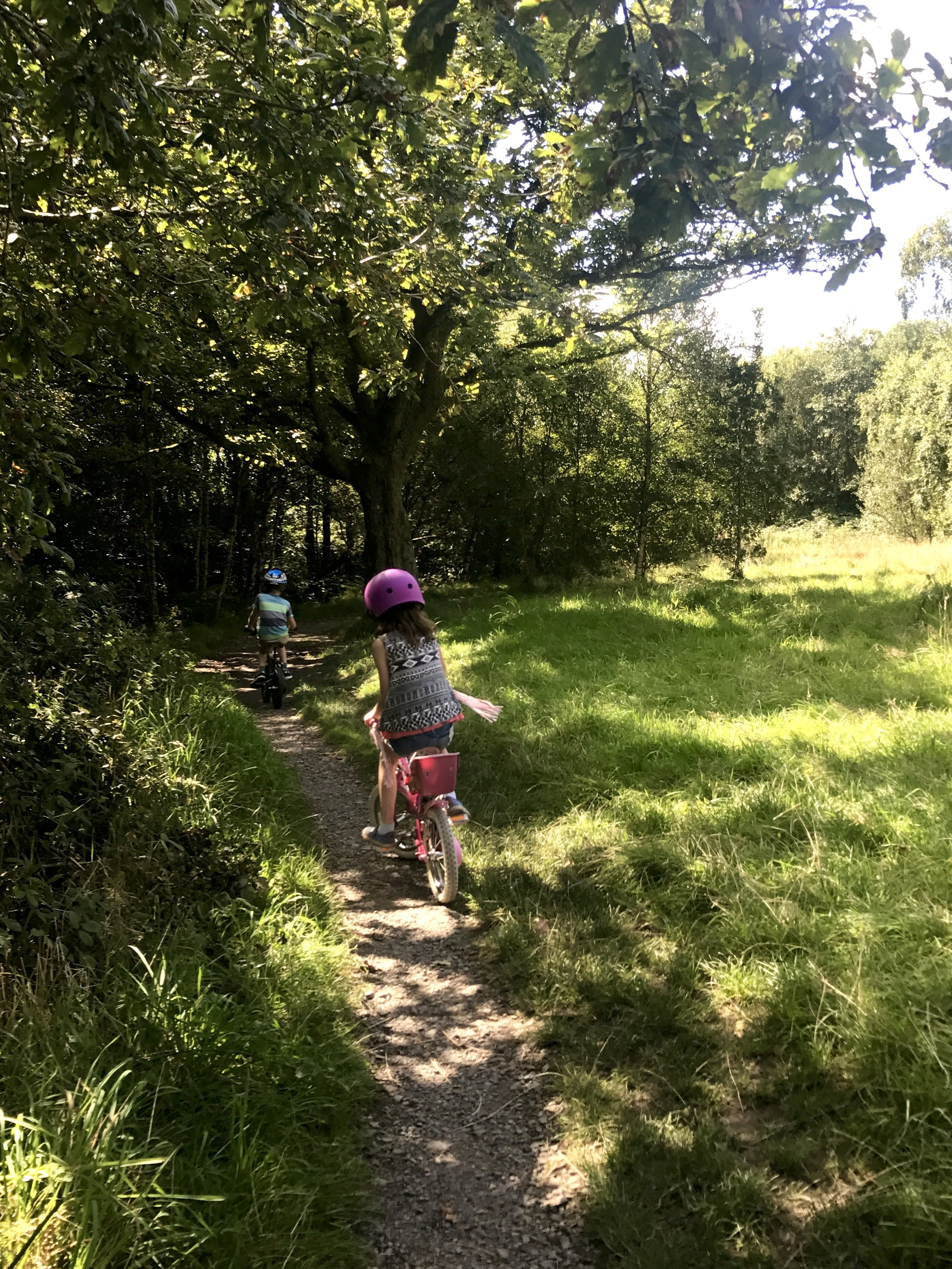 Exploring Dare Valley Country Park Aberdare