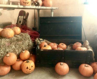 Tredegar House halloween
