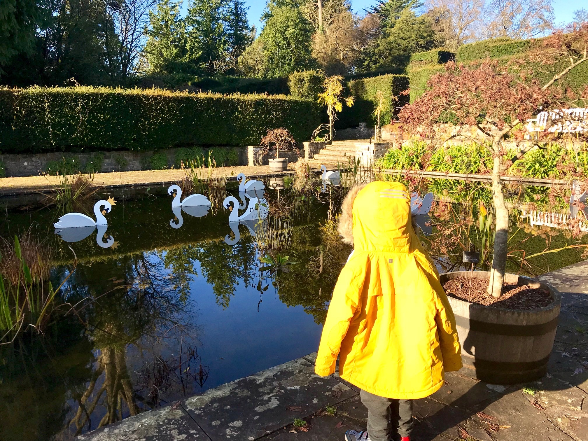 Dyffryn Gardens 12 days of christmas