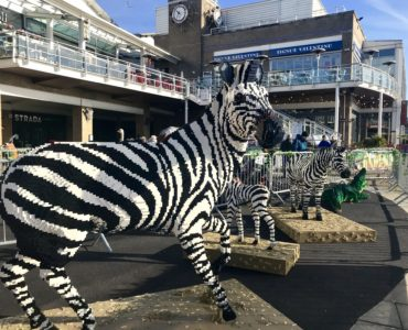 Great Brick Safari Lego Animals Mermaid Quay Cardiff