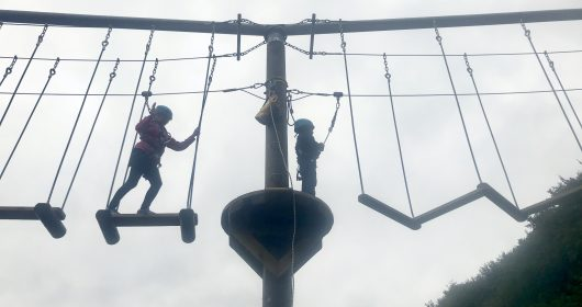 CoedLan High Ropes St Fagans