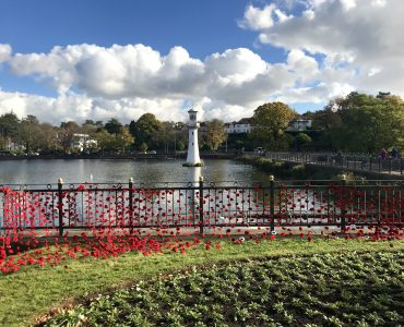 Knitted poppies Roath Lake Cardiff