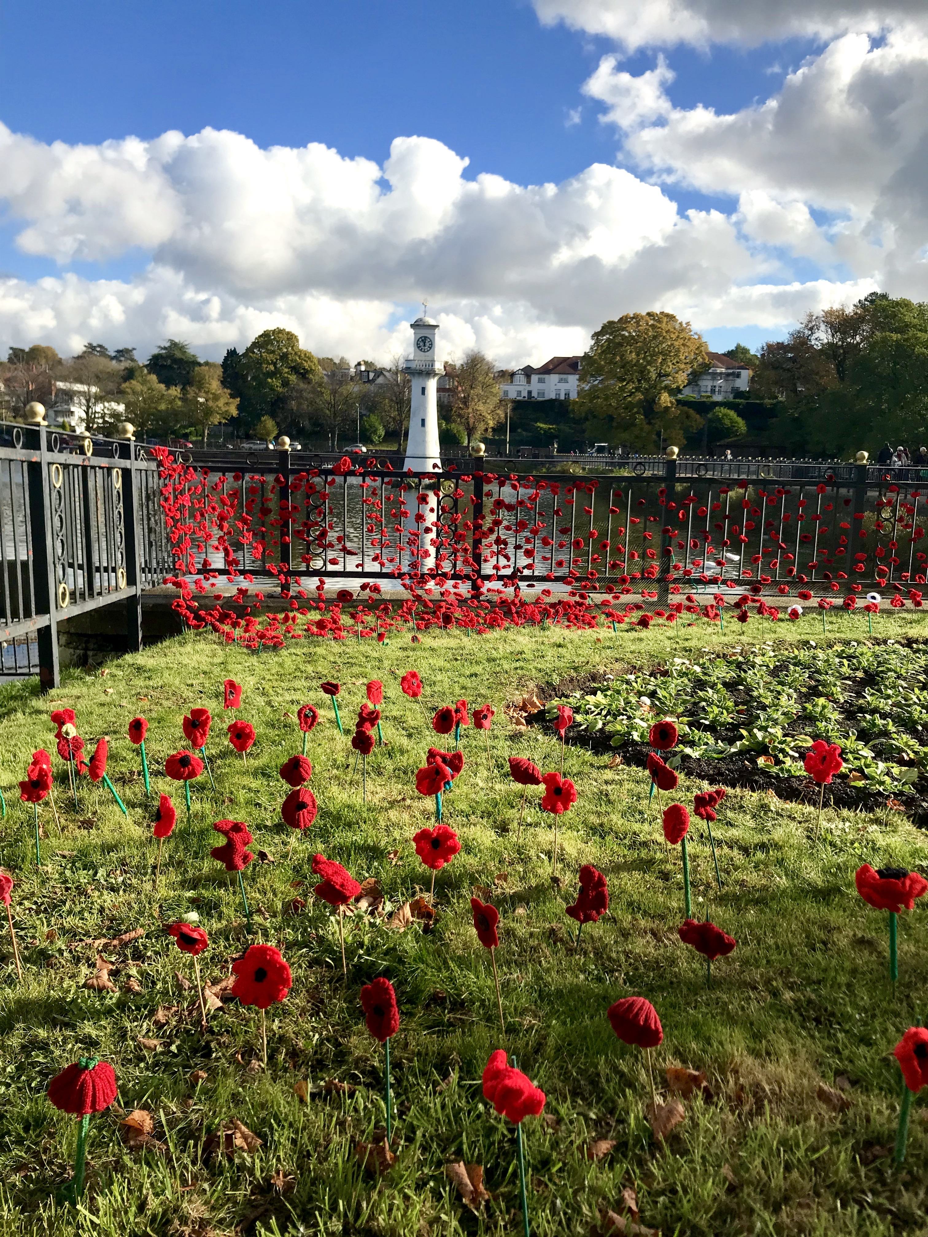 Roath Lake Poppies