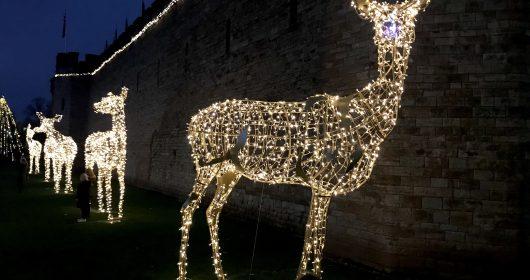 Cardiff at Christmas