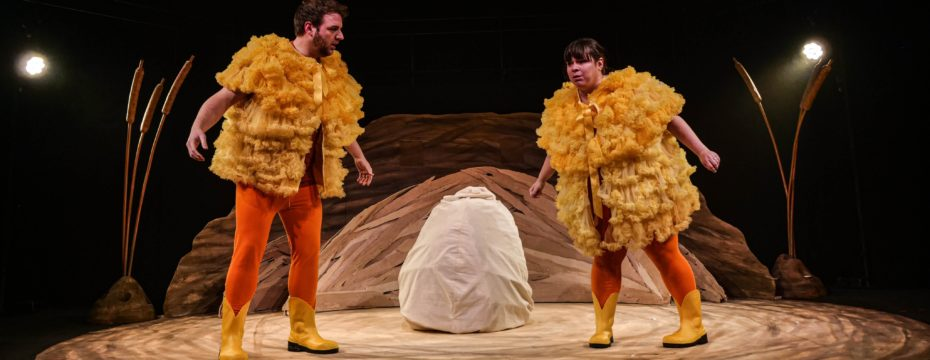 The Ugly Duckling Sherman Theatre Cardiff