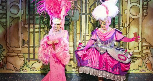 Cinderella New Theatre Cardiff