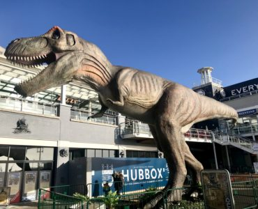 T-Rex Mermaid Quay