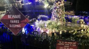 Alexandra's Enchanted Garden Penarth